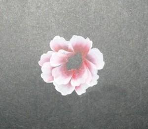 Tiếp tục vẽ tầng  thứ hai của cánh hoa