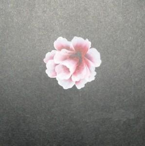 Vẽ hai vòng để làm nhụy hoa