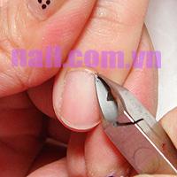 Đắp móng nhũ kết hợp cọ râu (bước 1)