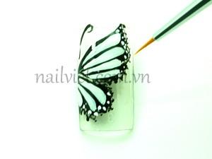 Chấm các chấm nhỏ xung quanh cánh để tăng độ chi tiết cho cánh bướm và thêm vẽ thêm râu